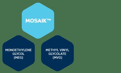 MOSAIK™-MEG-MVG-4.png